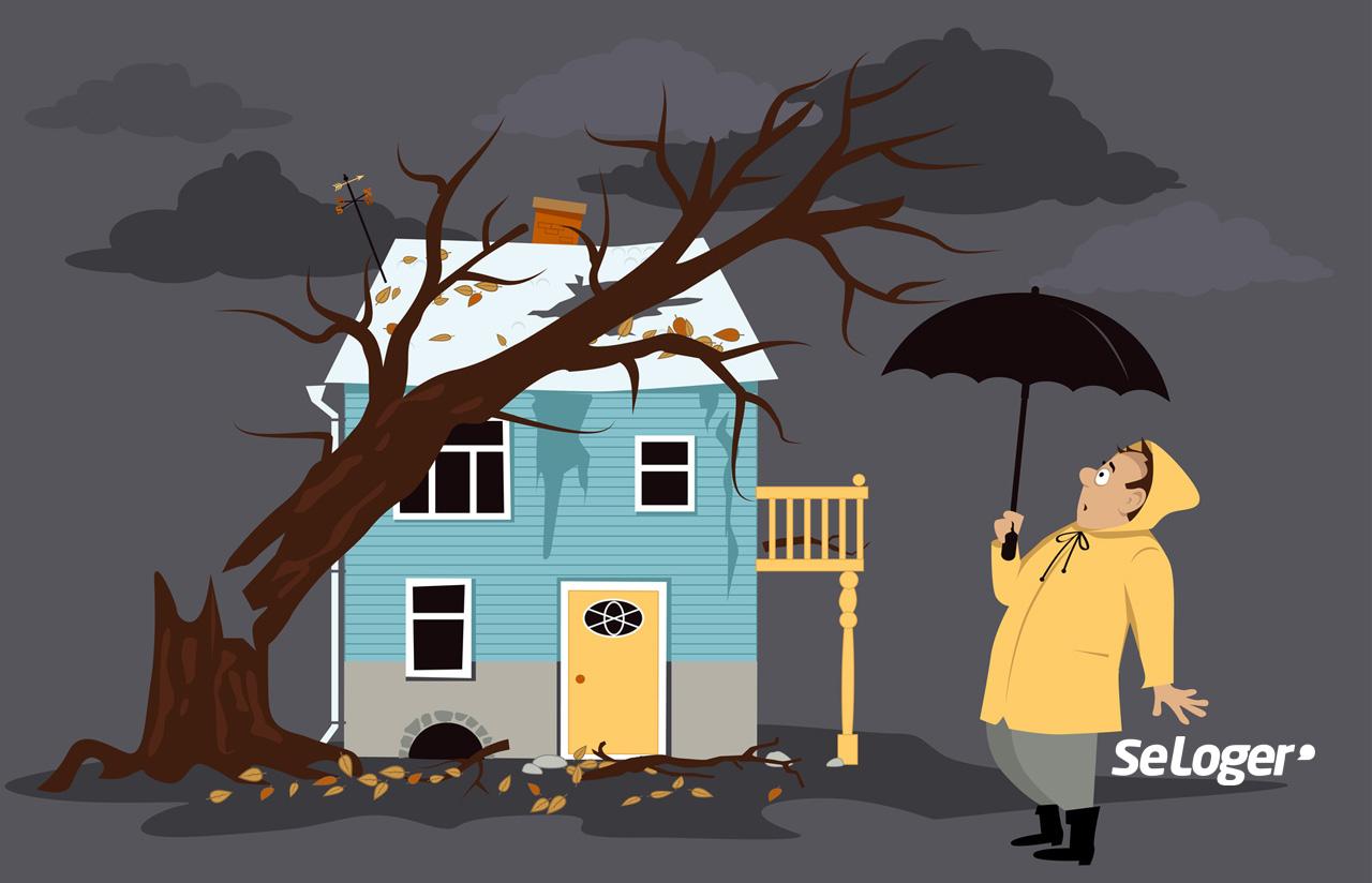 Assurance quotidienne : comment choisir son assurance vie ?